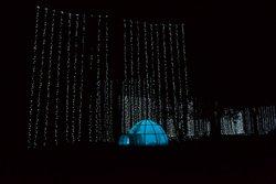 •160 String Light Curtain in Polar Bear Playground